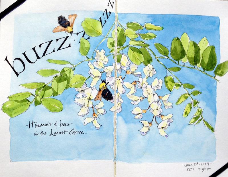 Locust Buzz