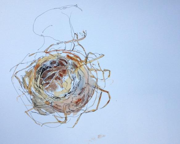 Stage 1: Nest