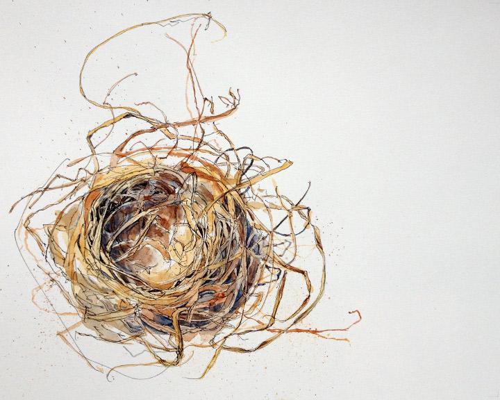 Stage 3: Nest