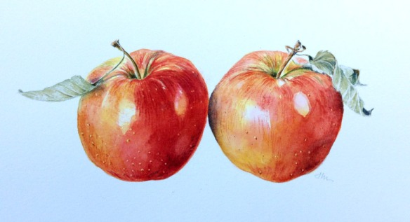 Apple Pair
