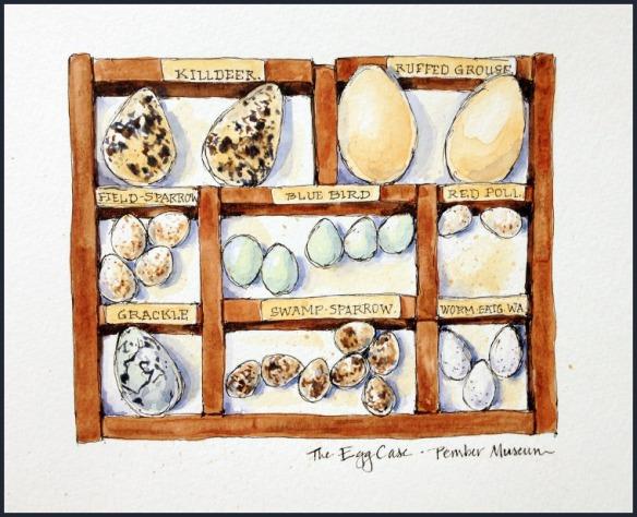 The Egg Case