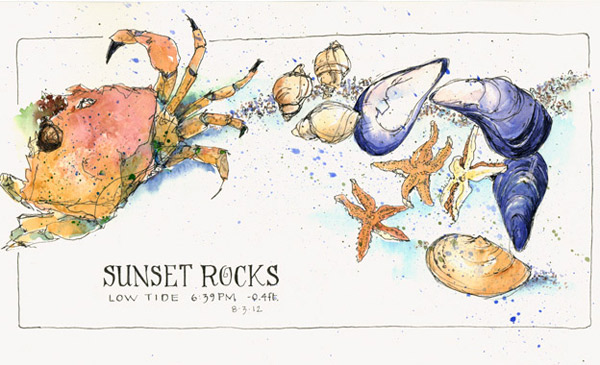 Sunset-Rocks, Maine