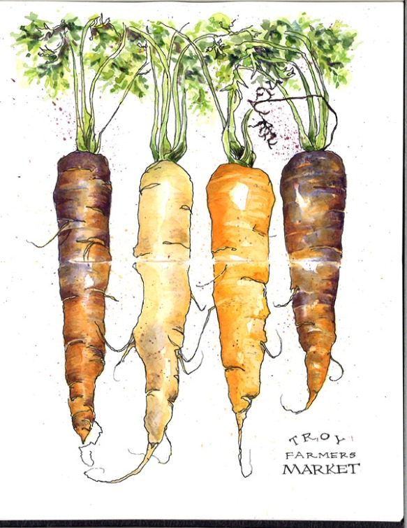 carrots_farmers-market