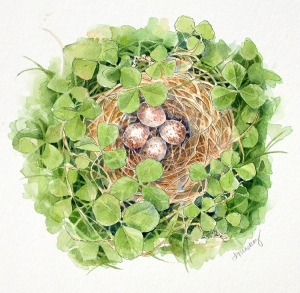 song sparrow nest surrounded by clover
