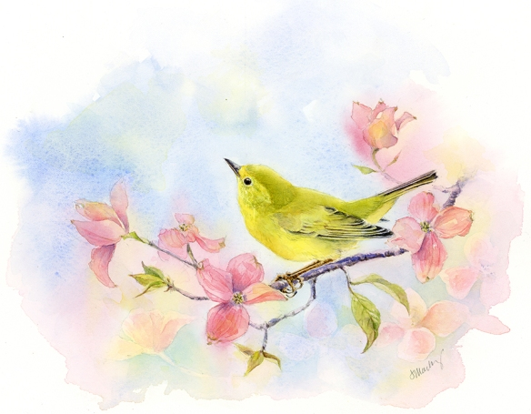 "Yellow Warbler (female), watercolor on Fabriano soft press 140lb paper, 6""x8"""