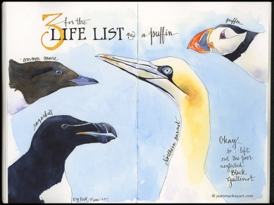 Life List- Birds