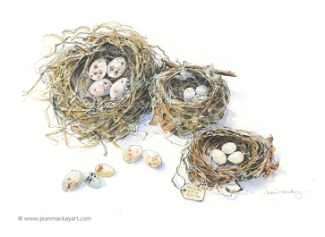 Nest Trio, watercolor, 8x10