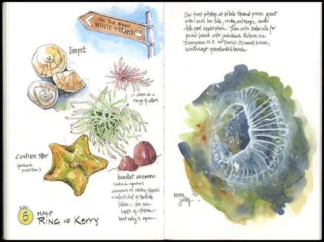 06_Ring-of-Kerry