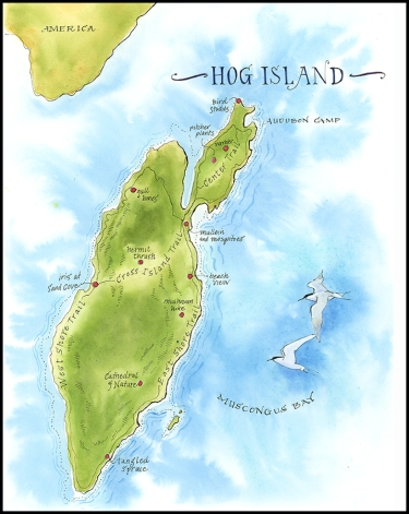Hog Island Map, 2019, JMACKAY