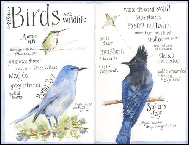 Bird List_JMACKAY