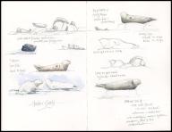 06_Seals