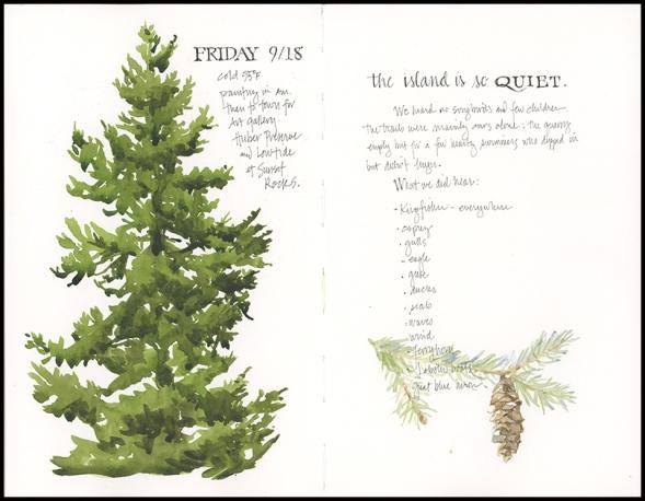 07_Spruce
